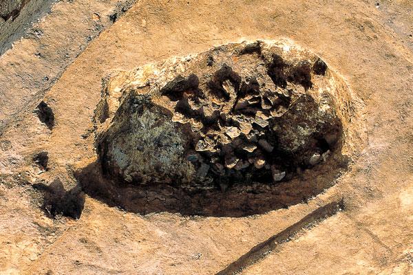 粘土採掘跡兼廃棄土坑